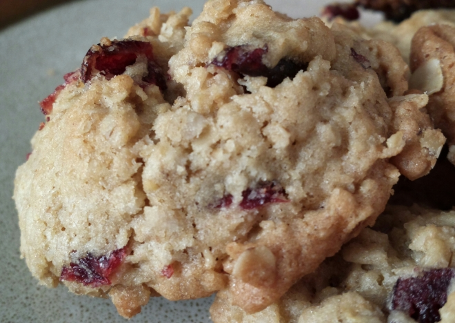 Oatmeal and Cranberry Cookies