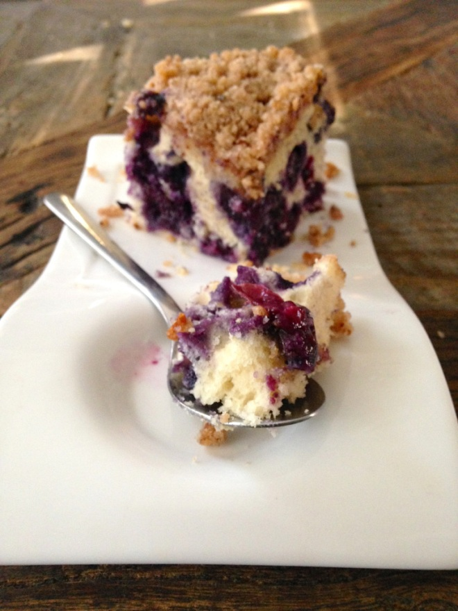 Blueberry Crumb Cake by Just One More Bite